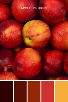 Rich, bold, and often associated with passion and love, red is a beautiful and attention-grabbing color. With a dash of yellow, this warm red palette is sure to make your next design project pop. #color #colour #colorpalette #palette #fall #fallcolors #autumn #autumncolors #apples #applepicking #applepie #applecrisp #lookadesign Fall Color Palette, Color Palettes, Apple Crisp, Trendy Colors, Color Inspiration, Apples, Design Projects, Favorite Color, Color Schemes