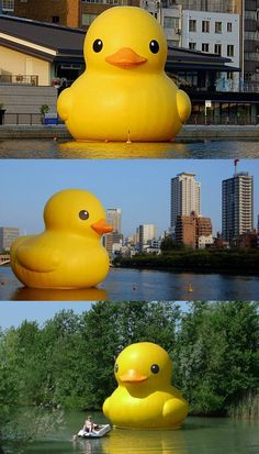 Florentijin Hofman's giant Rubber Duck outdoor installation - Land Art  -Repinned by Trey Whitworth
