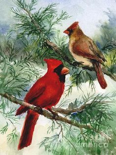 """A winter time painting of a colorful Cardinal couple sitting on evergreen bought.  The original is 6x8"""", and will take a mat with a 5x7 window to fit into an 8x10 frame."""