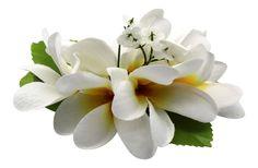 Hawaii Luau Party Dance Artificial Fabric Plumeria Flower Hair Clip White with Yellow Heart