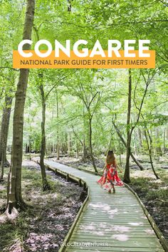 Congaree National Park South Carolina - Best Things to Do for First Timers // Local Adventurer Visiting Columbia SC? Here are 7 best things to do in Congaree National Park, learn how to see the synchronous fireflies, and more essential tips. Congaree National Park, Crater Lake National Park, Everglades National Park, Capitol Reef National Park, Mount Rainier National Park, Sequoia National Park, Grand Teton National Park, National Forest, Guadalupe Mountains National Park