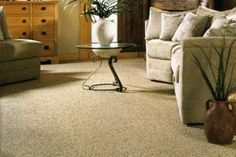 Choose a Professional Carpet Cleaning Company in Sausalito Carpet Flooring, Rugs On Carpet, Carpets, Carpet Fitters, Karndean Flooring, Carpet Cleaning Company, Professional Carpet Cleaning, Wood Vinyl, Wood Laminate
