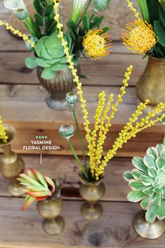 Beautiful Succulents for my table. They're simple and elegant. I love it! #designsponge  #dssummerparty