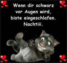 Kitten Cartoon, Kitten Images, Good Night Wishes, Romantic Pictures, Feeling Happy, Sweet Dreams, Animals And Pets, Haha, Jokes