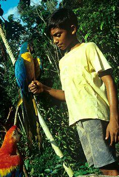 Presidente Figueiredo# Araras# Brasil# Crianca# Amazonia#