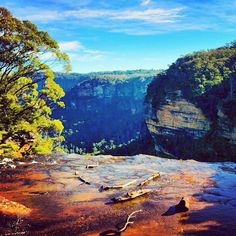 Wentworth Falls NSW Australia    Photo by seeaustralia #yankinaustralia #australia