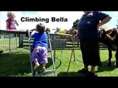 Climbing Bella (24 to 30 October 2016)