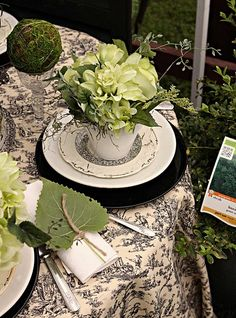 black and white toile and plates with shades of green plants
