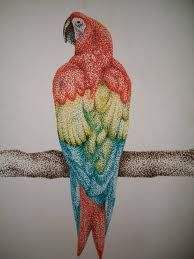 Still Life Drawing, Galaxy Art, Stippling, Cute Drawings, Fun Projects, Parrot, Pop Art, Owl, Arts And Crafts