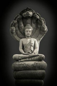 Buddha and Nagas