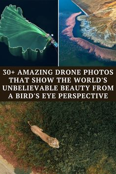 Take a look at these incredible drone photos showcasing the natural beauty of our world, Funny Corny Jokes, Short Jokes Funny, Funny Disney Jokes, Dark Humor Jokes, Funny Fun Facts, Cartoon Jokes, Funniest Jokes, Funny Humor, Extremely Funny Jokes