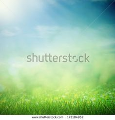 Sport Soft Stock Photos, Images, & Pictures | Shutterstock