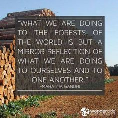 What we are doing to the forests of the world is but a mirror reflection of what we are doing to ourselves and to one another - #Gandhi