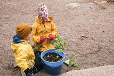 Perustetaan oma hyötypuutarha ämpäreihin tai saaveihin. Tutustutaan kasvin elämään siemenestä täysikasvuiseksi kasviksi.   Katso ohjeet ja lisää vinkkejä nettisivuillamme!  Avainsanat: Kasvikset ja hedelmät Kestävät elämäntavat Pienryhmätoiminta Ruoan reitit pellolta pöytään Yksilötehtävä Kanken Backpack, Backpacks, Bags, Handbags, Backpack, Backpacker, Bag, Backpacking, Totes