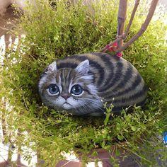 Bahar geldi#kedi #cat #pietra #izmir #taşboyama #rockpainting #elyapımı #handmade #hayvanseverler #animallovers #thedailykitten #catfollowers #catstagram #dekoration #balkon #cat #tasarım #stoneart #instacat #catsofinstagram #catsofworld