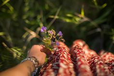 Jonna Jinton, Country Life, Wild Flowers, Combat Boots, Nature Photography, Summer, Country Living, Summer Time, Combat Boot