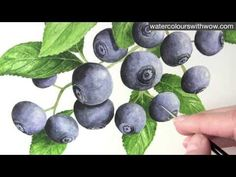 Video on how to paint blueberries.