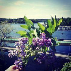 Windy sunshiny day near the bridge. Feels like summer! #onebouquetperday #kukkakimppu #bouquetdefleurs #lilac #ilovelilacs #heinola