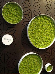 #home #interior #designs - moss #wall art