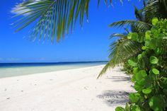 Varadero, Cuba - done! Varadero Cuba, Hotels, Bucket, Beach, Places, Water, Holiday, Travel, Outdoor