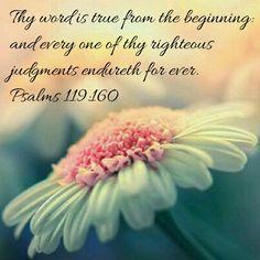 Psalms 119:160 KJV
