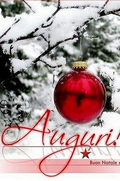 Auguri di Buon Natale a ..TUTTI...