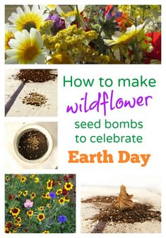 Looking for an easy earth day craft that also helps make the planet more beautiful? Turn a drab piece of land into a work of art with wildflower seed bombs!