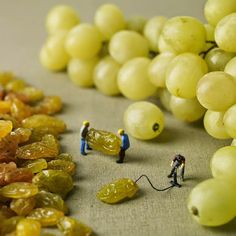 Grapes & Raisins