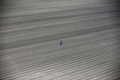 A worker walks through farm fields in Los Banos, California, United States, May 5, 2015. California water regulators on Tuesday adopted the state's first rules for mandatory cutbacks in urban water use as the region's catastrophic drought enters its fourth year. Urban users will be hardest hit, even though they account for only 20 percent of state water consumption, while the state's massive agricultural sector, which the Public...
