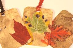 Bright Fall Leaves   Set of 8   Gift Tags  Autumn by SiriusFun