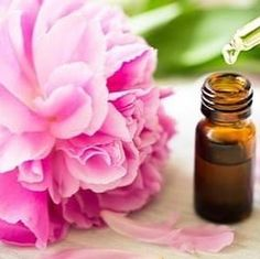استخدم الناس الزيوت العطرية لزيادة الحسية والرغبة الجنسية لآلاف السنين إن فكرة استخدام الزيوت العطرية للجنس والح Book Perfume Fragrances Perfume Women Perfume