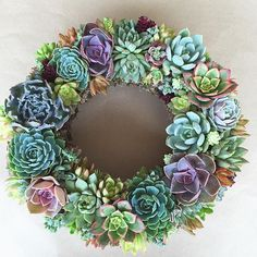 { Succulent Wreath } The colors and textures of a wreath are so beautiful!