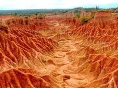 Cross the Tatacoa desert and move on to the Llanos Orientales   A Trip Through The Land Of Magical Realism