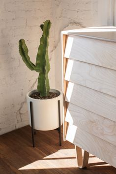 Modernica Case Study Ceramic Cylinder with Metal Stand and Bentwood Dresser