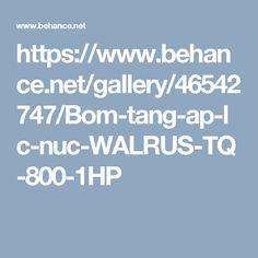 Bơm tăng áp lực nước WALRUS-TQ-800-1HP tại Thuận Hiệp Thành TP HCM