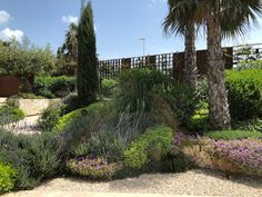 jochen lendle jle arquitectos Solar, Infinity Pool, Sidewalk, Garden, Plants, Architects, Landscape Architecture, House Building, Cool Architecture