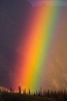 Rainbow God & with Rainbow Nature God always forever & Ever with me. Rainbow. 😉❤💛💚💙🌈