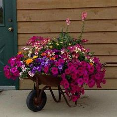 Need to get some flowers for my wheelbarrows....