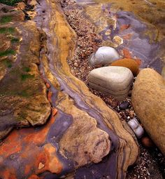 Point Lobos Rocks