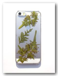Handmade iphone 5/5S case, Resin with Real Fern, Fern phone case (137)