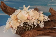 Hey, I found this really awesome Etsy listing at https://www.etsy.com/listing/224045338/seashell-hair-comb-hair-accessories