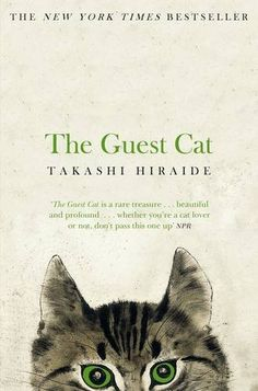 The Guest Cat by Takashi Hiraide Such a beautifully written book ❤️