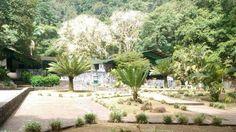Inparques inició trabajo de acondicionamiento en el Monumento Natural Alejandro de Humboldt