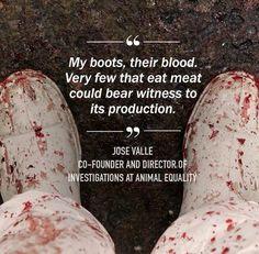 #vegan for a reason