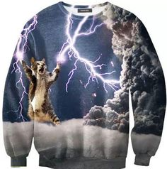 Because every person needs a sweatshirt with a picture of a  cat shooting lightning out of it's paws.