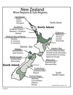 Region and sub region map of New Zealand Map Of New Zealand, New Zealand Wine, Society Of Wine Educators, Wine Descriptions, Whisky, History Of Wine, Wine News, Buy Wine Online, Wine Education