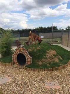 Why is using a dog house a good idea? Most people tend to have the misconception that dog houses are meant for only those dog owners who intend to keep their dogs outside. Dog Backyard, Backyard Ideas, Dog Friendly Backyard, Dog Playground, Playground Ideas, Backyard Playground, 15 Dogs, Dog Yard, Cool Dog Houses