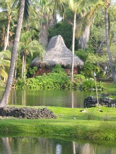#Kona Village Resort, Kailua~Kona, Hawaii. Laid back - perfect for relaxing and rejuvenating!  For more info:  ASPEN CREEK TRAVEL - karen@aspencreektravel.com