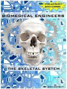 Career In Biomedical Engineering  Biomedical Engineering