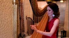 O Holy Night - YouTube O Holy Night, Harp, Chicago, Youtube, Youtubers, Youtube Movies